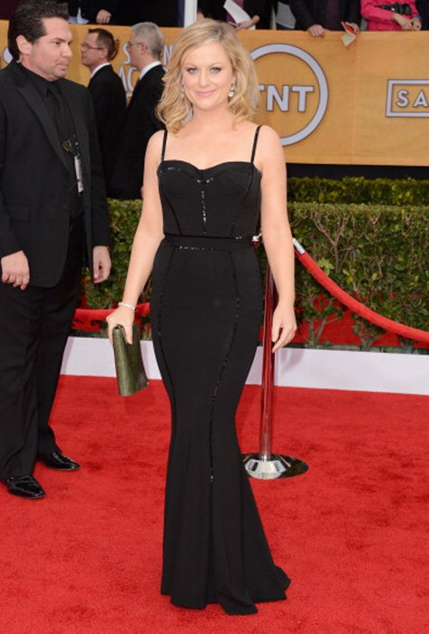 LOS ANGELES, CA - JANUARY 27: Actress Amy Poehler attends the 19th Annual Screen Actors Guild Awards at The Shrine Auditorium on January 27, 2013 in Los Angeles, California. (Photo by Jason Merritt/WireImage) 23116_014_1721.jpg